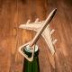 Atidarytuvas – lėktuvas